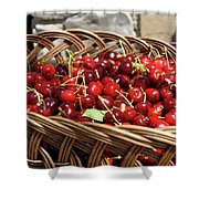 Fresh Picked Cherries In A Wicker Basket In Dolnje Cerovo In The Shower Curtain