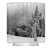 Fresh Snow On The Trees Shower Curtain
