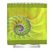 Fresh Spiral Shower Curtain