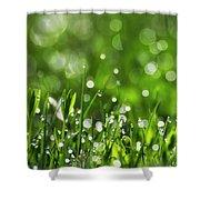 Fresh Spring Morning Dew Shower Curtain