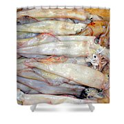 Fresh Squid On A Market Stall Shower Curtain