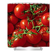 Fresh Tomotos On The Vine Shower Curtain