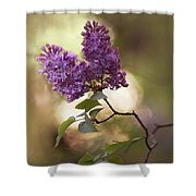 Fresh Violet Lilac Flowers Shower Curtain