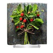 fresh Wild strawberries on wooden background  Shower Curtain
