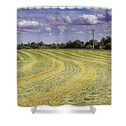 Freshly Mown Hay  Shower Curtain