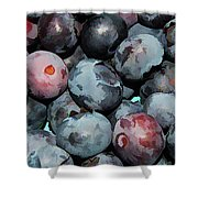 Freshly Picked Blueberries Shower Curtain