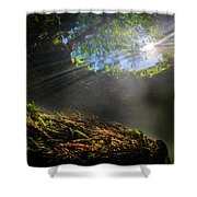 freshwater impressions I Shower Curtain