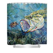 Freshwater Shower Curtain