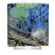 Freshwater Turtle Sunning Shower Curtain