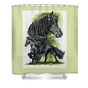 Friesian Shower Curtain