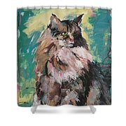 Friday Lioness Shower Curtain