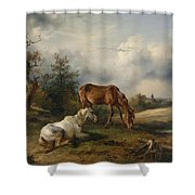 Friedrich Gauermann A Grey And A Chestnut In The Pasture  1825 Shower Curtain