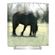 Friend Of Distinction  Shower Curtain