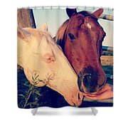 Friendly Horses Shower Curtain