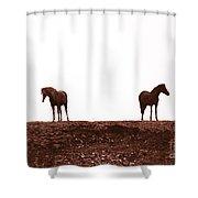 Friends-1 Shower Curtain