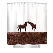 Friends-2 Shower Curtain