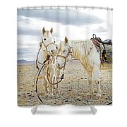 Friends And Companions  Shower Curtain