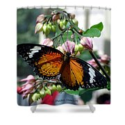 Friends Come In Small Packages Shower Curtain