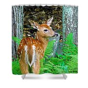 Friends Of The Forest  Shower Curtain