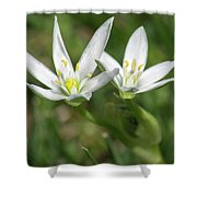 Friendship Flowers Shower Curtain