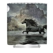 Friesian Fantasy Revisited Shower Curtain