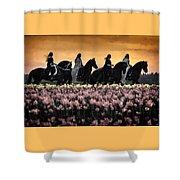 Friesians At Sunset Shower Curtain