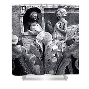 Frieze Work In Black And White  Shower Curtain