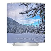 Frigid Beauty Shower Curtain