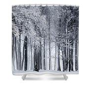 Frigid Forest Shower Curtain