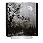 Frigid Moonlit Night Shower Curtain