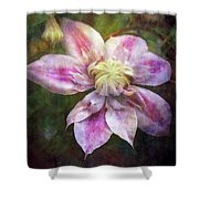 Frilled Clematis 1201 Idp_2 Shower Curtain