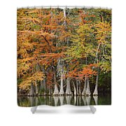 Frio River #5 2am-27571 Shower Curtain