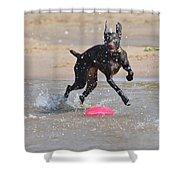 Frisbee On The Beach Shower Curtain