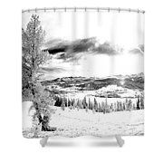 Frisco In The Snow Shower Curtain