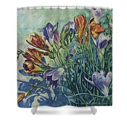 Frishias Shower Curtain