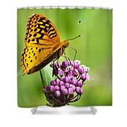 Fritillary Butterfly And Flower Shower Curtain