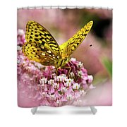 Fritillary Butterfly On Flowers Shower Curtain