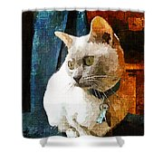 Fritz The Cat Shower Curtain
