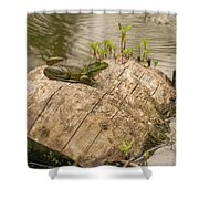 Frog 1 Shower Curtain