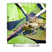 Frog 3 Shower Curtain