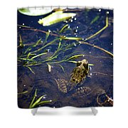 Frog 5 Shower Curtain
