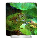 Frog And Lily Pad 3076 Idp_2 Shower Curtain