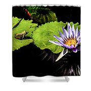 Frog And Lily Reflected Shower Curtain