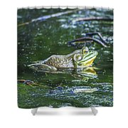 Frog In A Pond Shower Curtain