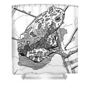 Oak Toad On A Leaf Shower Curtain