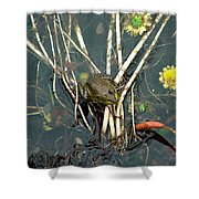Frog On A Stick Shower Curtain