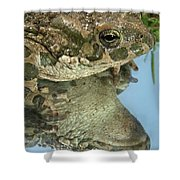 Frog Reflection Shower Curtain