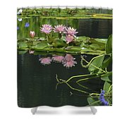 Water Lily Reflections Shower Curtain