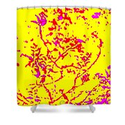 Frolic Shower Curtain by Eikoni Images