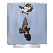Frolicking Eagles Shower Curtain